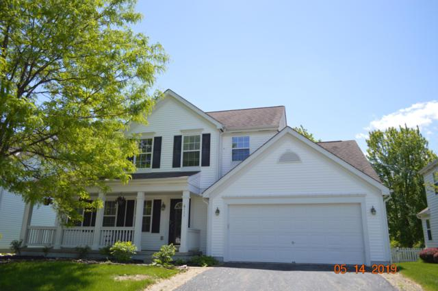 6111 Blaverly Drive, New Albany, OH 43054 (MLS #219016862) :: RE/MAX ONE