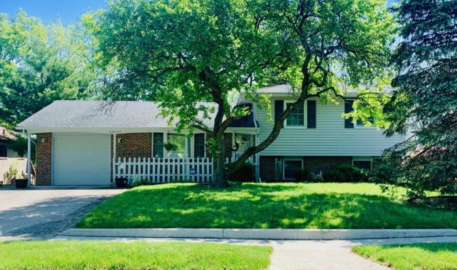 5272 Rockport Street, Columbus, OH 43235 (MLS #219016989) :: Brenner Property Group | Keller Williams Capital Partners