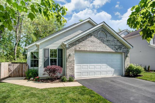 2710 Northwold Road, Columbus, OH 43231 (MLS #219017057) :: Berkshire Hathaway HomeServices Crager Tobin Real Estate