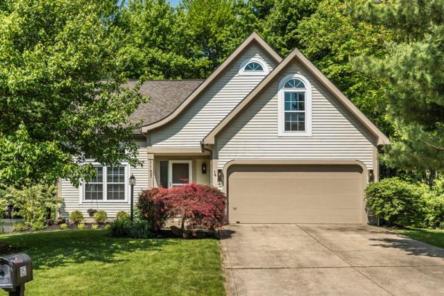 1157 Rice Avenue, Gahanna, OH 43230 (MLS #219017072) :: Huston Home Team