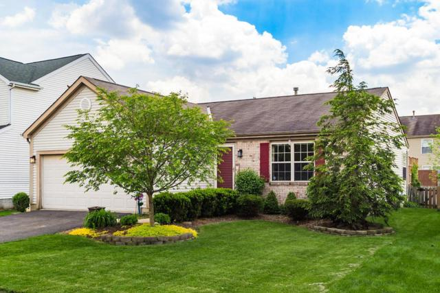 6731 Winchester Crossing Boulevard, Canal Winchester, OH 43110 (MLS #219017103) :: Signature Real Estate