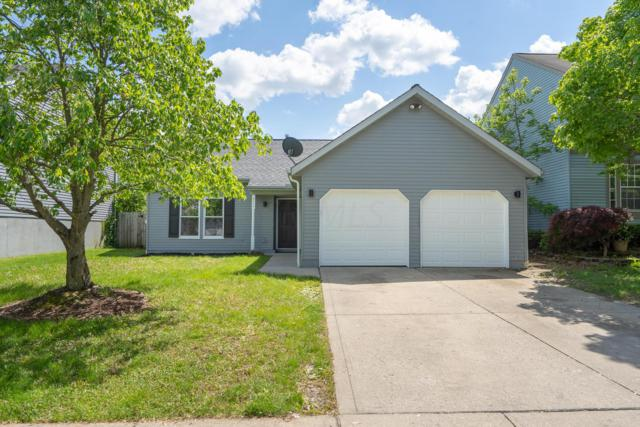 915 Cherry Bud Drive, Columbus, OH 43228 (MLS #219017106) :: Berkshire Hathaway HomeServices Crager Tobin Real Estate