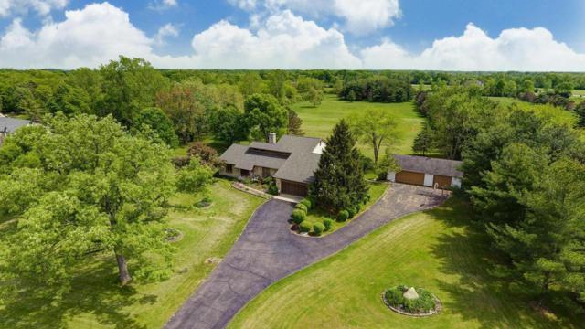 8805 Riebel Road, Galloway, OH 43119 (MLS #219017124) :: Berkshire Hathaway HomeServices Crager Tobin Real Estate