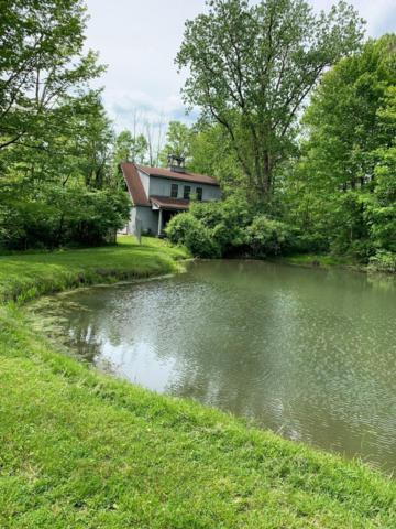 5095 Red Bank Road, Galena, OH 43021 (MLS #219017151) :: The Raines Group