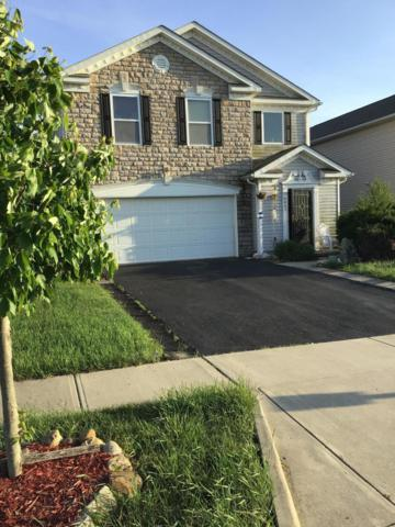 5447 Town Hill Drive, Canal Winchester, OH 43110 (MLS #219017354) :: RE/MAX ONE