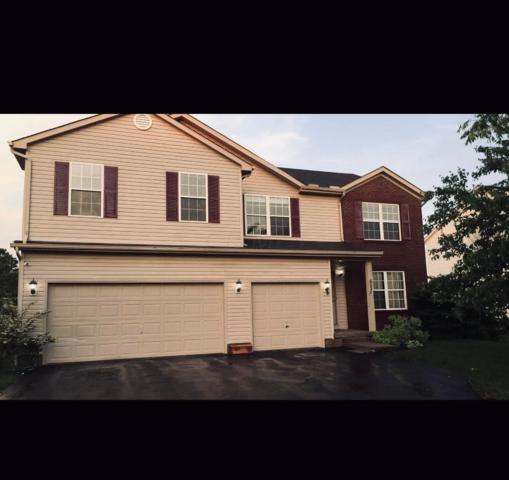 6030 Peridot Street, Grove City, OH 43123 (MLS #219017389) :: Keith Sharick | HER Realtors