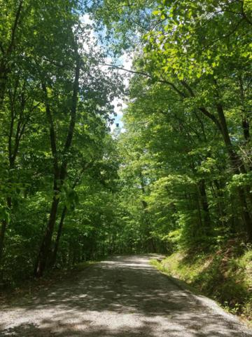 1239 Zuni Lane, Hide A Way Hills, OH 43107 (MLS #219017412) :: Keith Sharick | HER Realtors