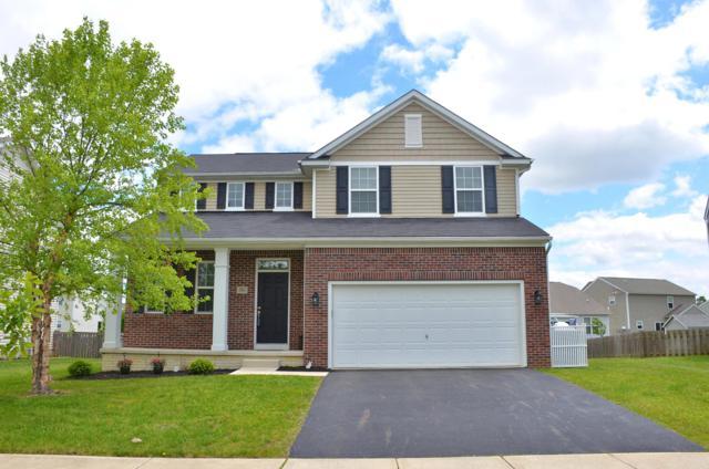 381 Linwood Street, Delaware, OH 43015 (MLS #219017417) :: Keith Sharick | HER Realtors