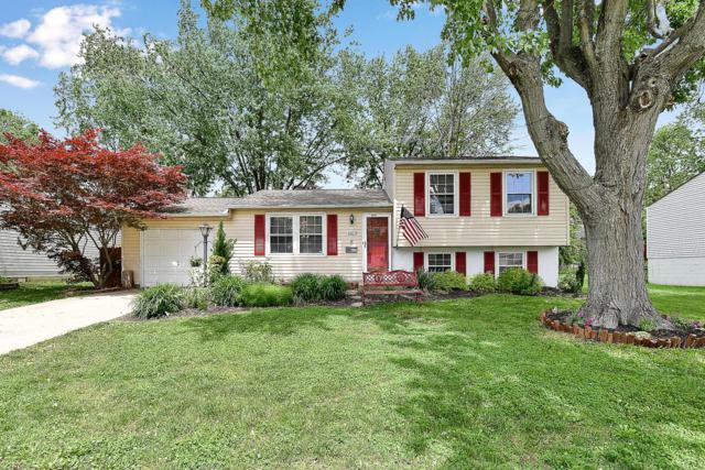 2674 Brunswick Drive, Grove City, OH 43123 (MLS #219017435) :: Brenner Property Group | Keller Williams Capital Partners