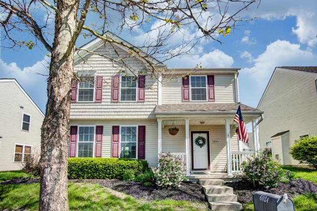 6024 Inslee Road, Dublin, OH 43016 (MLS #219017449) :: The Clark Group @ ERA Real Solutions Realty