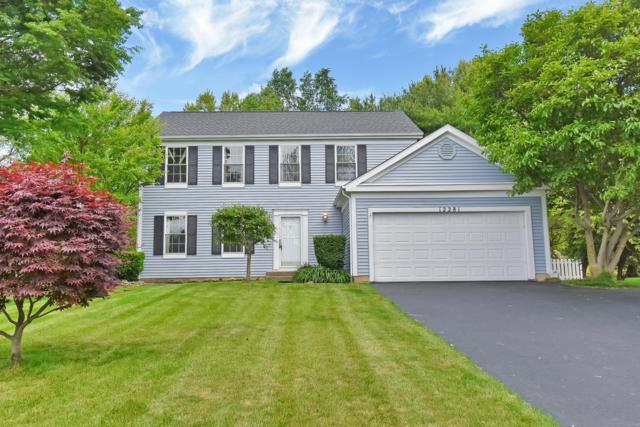 12281 Butterfield Drive, Pickerington, OH 43147 (MLS #219017520) :: RE/MAX ONE