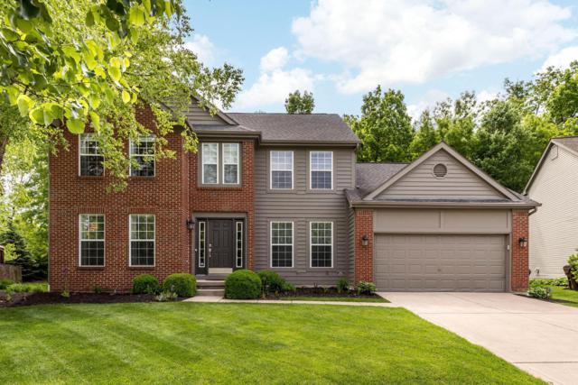 3817 Wedgewood Place Drive, Powell, OH 43065 (MLS #219017525) :: Huston Home Team
