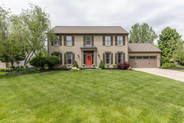 2991 Atoll Drive, Lewis Center, OH 43035 (MLS #219017536) :: Susanne Casey & Associates
