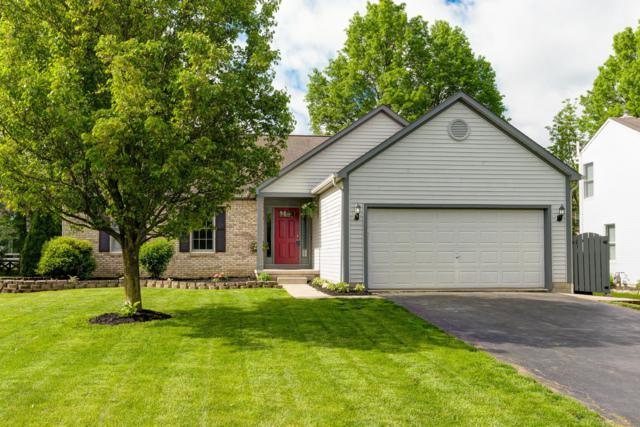 712 Stonewater Court, Delaware, OH 43015 (MLS #219017548) :: RE/MAX ONE