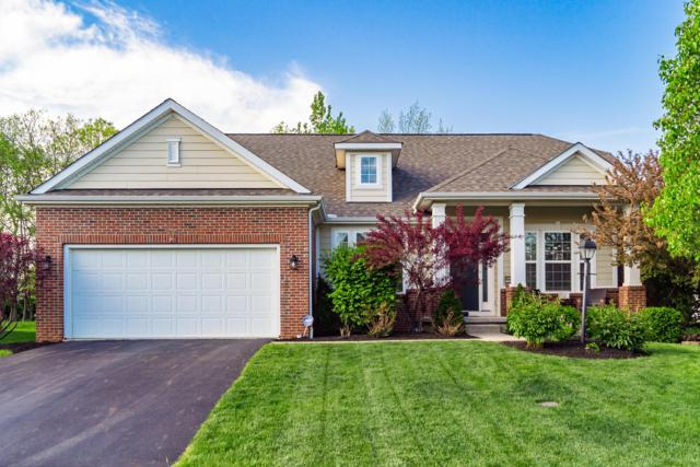 2047 Tulip Way, Lewis Center, OH 43035 (MLS #219017567) :: Huston Home Team
