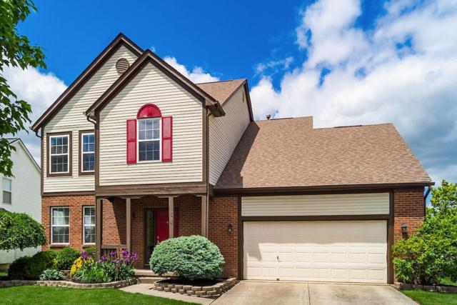 6888 Bethany Drive, Westerville, OH 43081 (MLS #219017602) :: Signature Real Estate