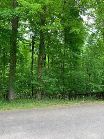 Lot 76 Courtland Drive, Howard, OH 43028 (MLS #219017630) :: Signature Real Estate