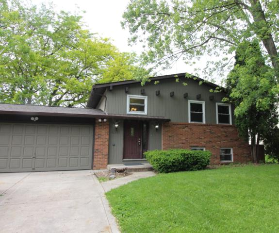 6301 Skywae Drive, Columbus, OH 43229 (MLS #219017633) :: Signature Real Estate