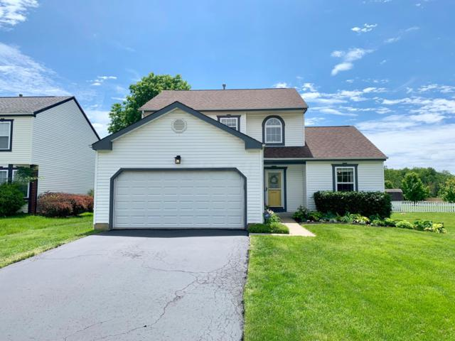 7647 Liddesdale Boulevard, Blacklick, OH 43004 (MLS #219017634) :: RE/MAX ONE