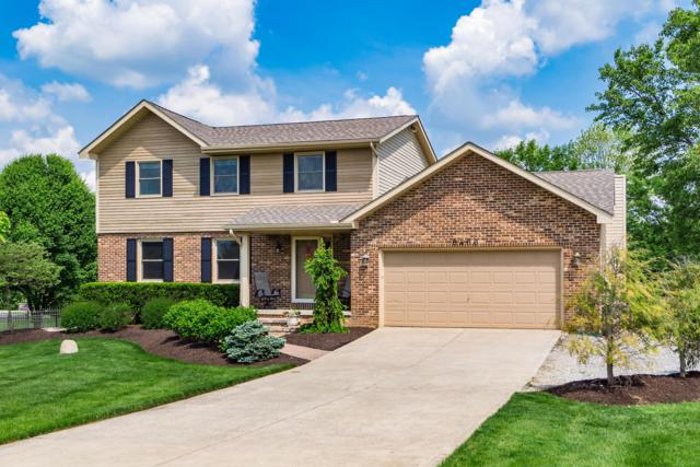 6466 Oakhurst Drive, Grove City, OH 43123 (MLS #219017682) :: RE/MAX ONE