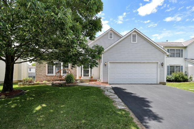 4005 Gallatin Drive, Obetz, OH 43207 (MLS #219017689) :: The Clark Group @ ERA Real Solutions Realty