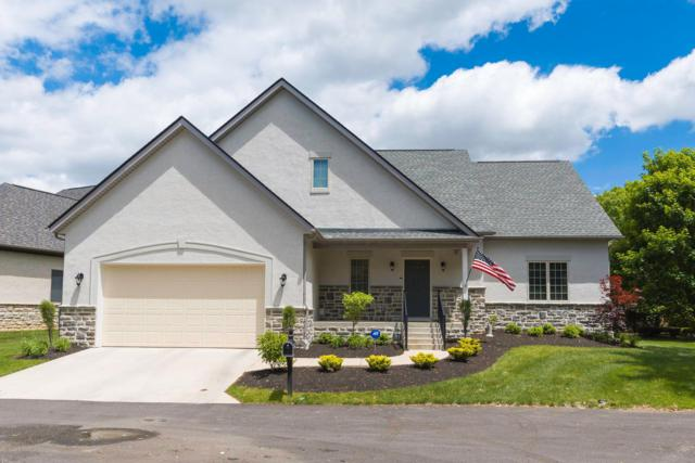 534 Meadowsweet Place, Gahanna, OH 43230 (MLS #219017699) :: The Raines Group