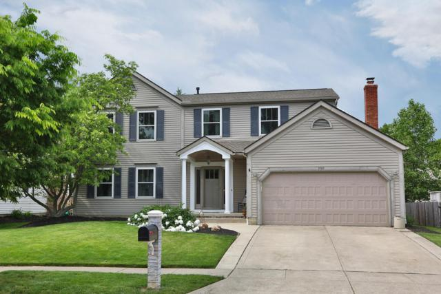 790 Mountainview Drive, Westerville, OH 43081 (MLS #219017737) :: Shannon Grimm & Partners