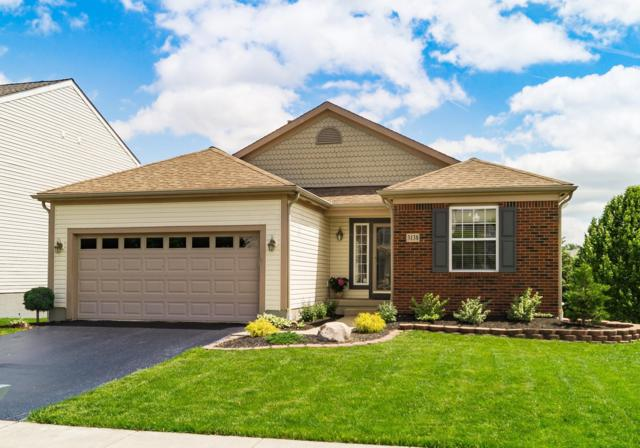 3138 Menzola Drive, Columbus, OH 43228 (MLS #219017765) :: Brenner Property Group | Keller Williams Capital Partners