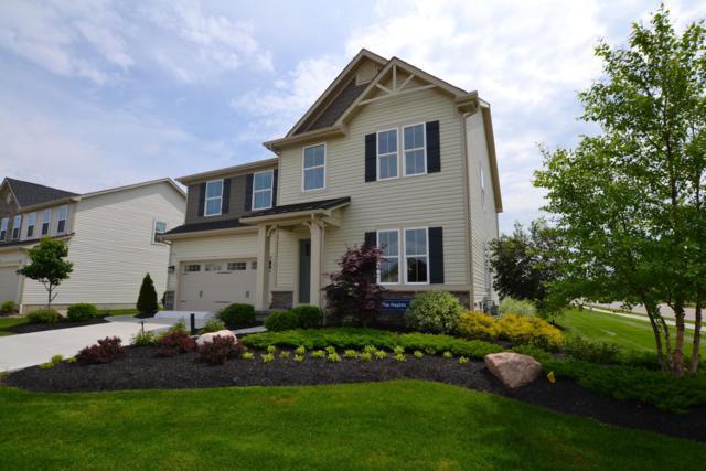 100 Ellicot Road, Delaware, OH 43015 (MLS #219017786) :: Shannon Grimm & Partners