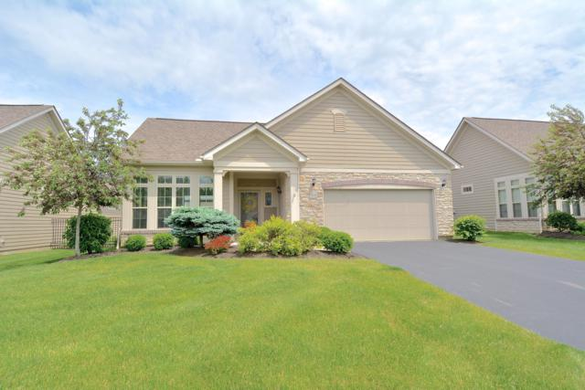 1070 Little Bear Loop, Lewis Center, OH 43035 (MLS #219017792) :: Shannon Grimm & Partners