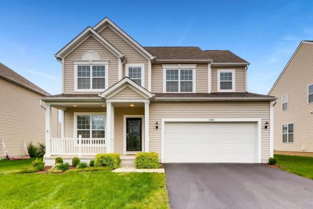 1389 Park Meadow Drive, Marysville, OH 43040 (MLS #219017793) :: Huston Home Team