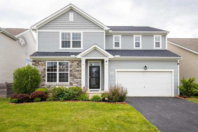 304 Olentangy Meadows Drive, Lewis Center, OH 43035 (MLS #219017813) :: The Clark Group @ ERA Real Solutions Realty