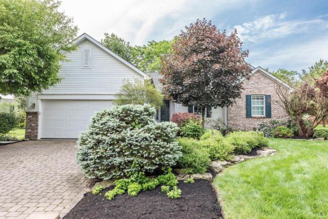 173 Dogwood Drive, Delaware, OH 43015 (MLS #219017875) :: Shannon Grimm & Partners
