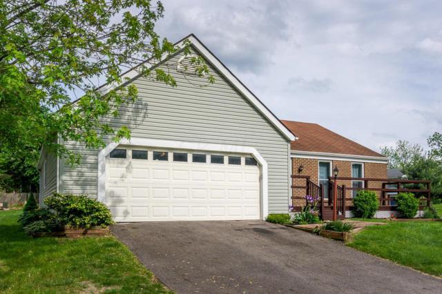 534 Saddletree Drive, Reynoldsburg, OH 43068 (MLS #219017934) :: The Raines Group