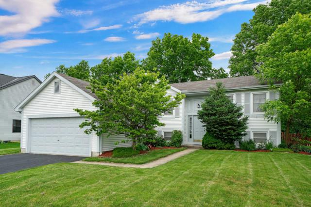 572 Gahanna Highlands Drive, Columbus, OH 43230 (MLS #219017951) :: The Raines Group
