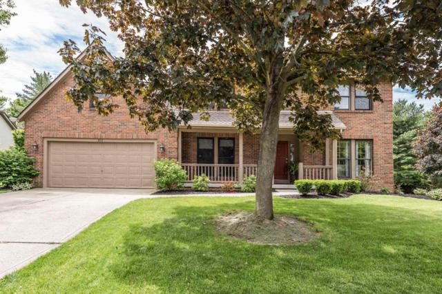 803 Wackeman Court, Westerville, OH 43081 (MLS #219017961) :: Huston Home Team