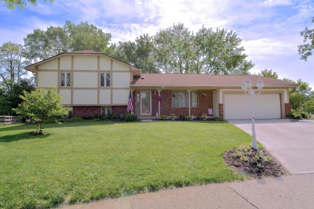 18 Walnut View Court S, Canal Winchester, OH 43110 (MLS #219018016) :: Signature Real Estate