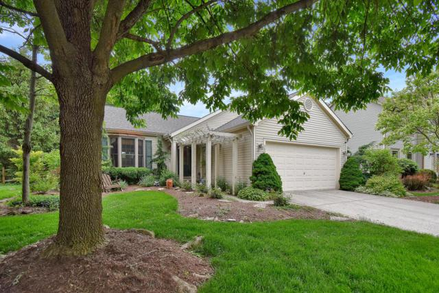 5824 Scotia Court, Dublin, OH 43016 (MLS #219018030) :: Brenner Property Group | Keller Williams Capital Partners