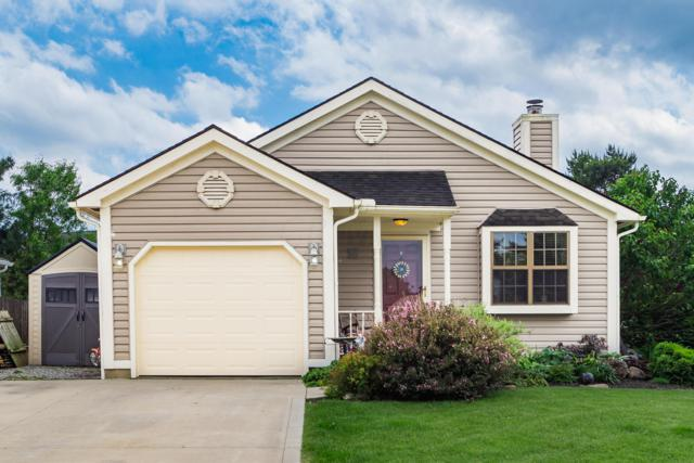 1063 Pacific Court, Worthington, OH 43085 (MLS #219018109) :: Brenner Property Group | Keller Williams Capital Partners