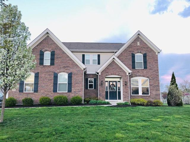 6994 Haffy Court, Canal Winchester, OH 43110 (MLS #219018112) :: Signature Real Estate