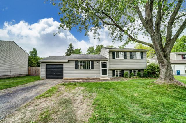 1285 Clove Court, Galloway, OH 43119 (MLS #219018133) :: Huston Home Team