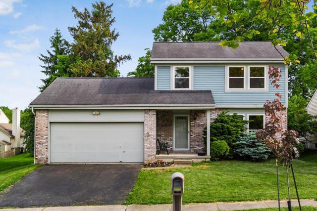 3495 Raflin Drive, Columbus, OH 43231 (MLS #219018180) :: The Clark Group @ ERA Real Solutions Realty