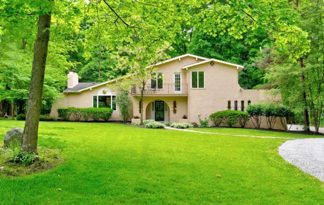 2430 E Powell Road, Lewis Center, OH 43035 (MLS #219018181) :: BuySellOhio.com