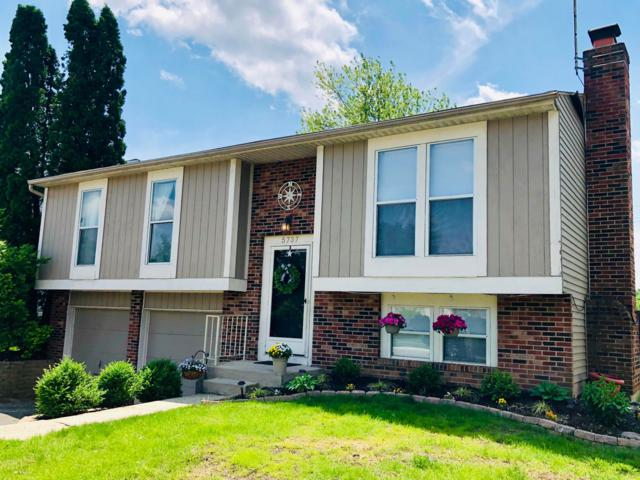5737 Angie Drive, Hilliard, OH 43026 (MLS #219018226) :: CARLETON REALTY