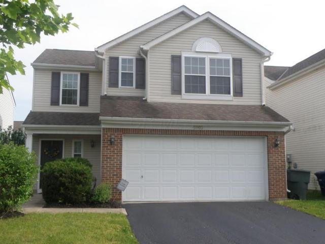 6903 Spring Bloom Drive, Canal Winchester, OH 43110 (MLS #219018431) :: RE/MAX ONE