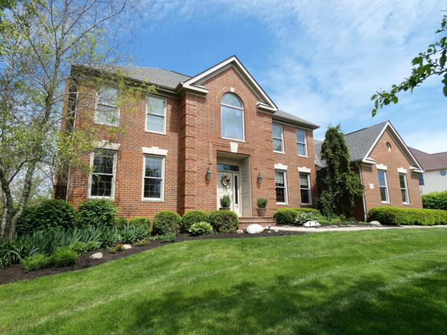 8751 Springflower Road, Pickerington, OH 43147 (MLS #219018453) :: The Clark Group @ ERA Real Solutions Realty