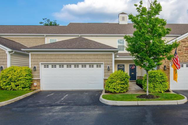 5677 Niagara Reserve Drive, Westerville, OH 43081 (MLS #219018549) :: Huston Home Team