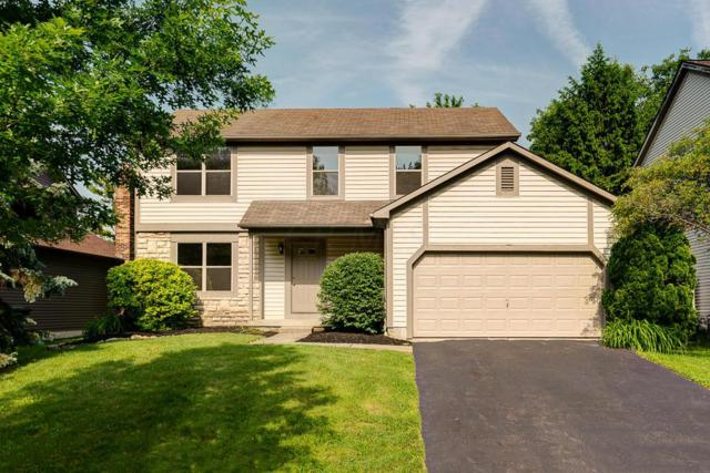 7987 Storrow Drive, Westerville, OH 43081 (MLS #219018591) :: The Clark Group @ ERA Real Solutions Realty