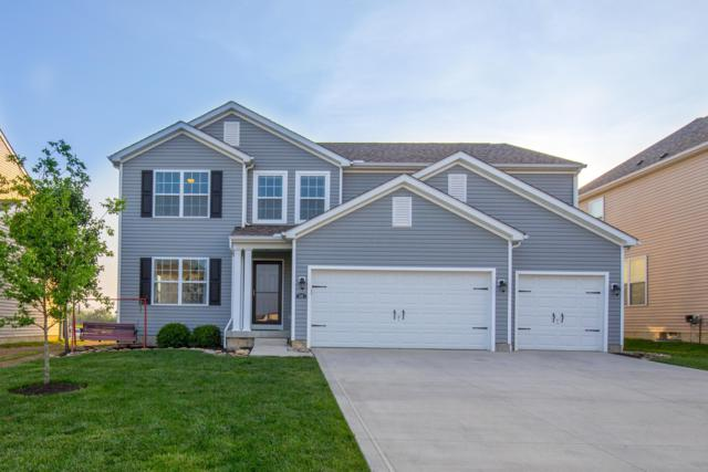 225 Honey Locust Lane, Commercial Point, OH 43116 (MLS #219018647) :: Signature Real Estate