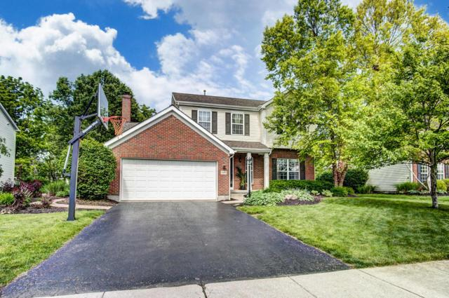 7049 Violet Veil Court, Dublin, OH 43016 (MLS #219018666) :: The Clark Group @ ERA Real Solutions Realty